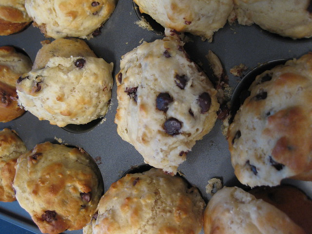 Oatmeal Chocolate Chip Muffins | Explore bnilsen's photos on ...