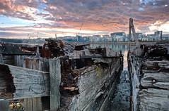 Derelict  wharf, Homebush  Bay 3