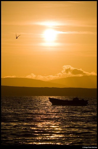 atardecer agua sunsets paracas perú
