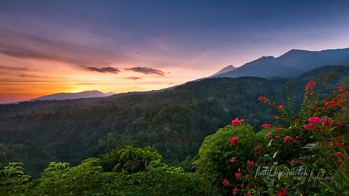 west indonesia landscape lombok nusa barat ntb tenggara