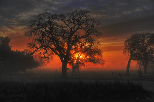 california calero sunrise dawn oaks bestinthewest supershot flickraward d3s nikonflickraward bestcapturesaoi