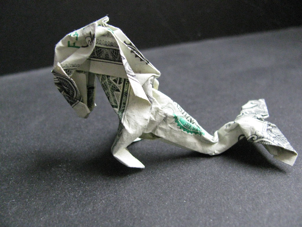 Morpheologys most interesting flickr photos picssr dollar hippocampus nov 2010 001 jeuxipadfo Choice Image
