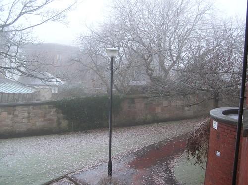 Freezing Fog in Glasgow