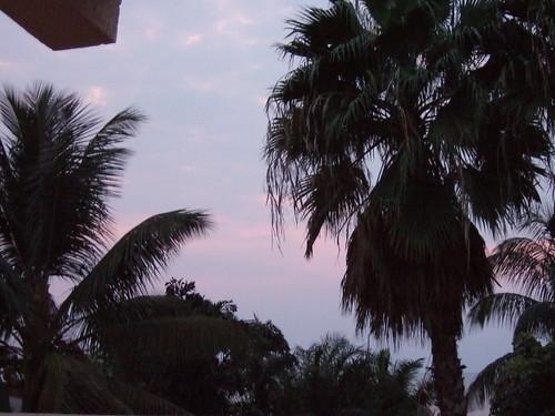africa trees sky hotel courtyard burundi bujumbura