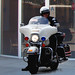 Small photo of LAPD motor officer