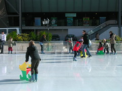 speed skating(0.0), roller skating(0.0), skating(1.0), winter sport(1.0), sports(1.0), recreation(1.0), outdoor recreation(1.0), ice skating(1.0), ice rink(1.0),