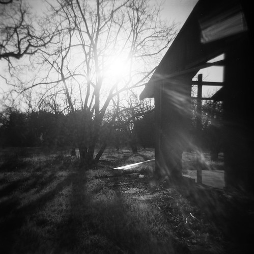 california blackandwhite bw abstract building tree abandoned 120 film monochrome square landscape holga branches sanjose flare backlit tangle morganhill selfdeveloped ilforddelta100 500x500 bsquare coyotevalley canoscan8800f d7611155mins shuttersaltw8