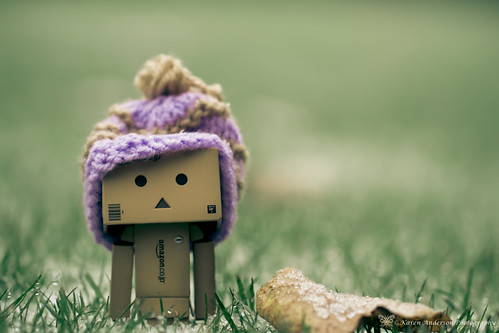 Danbo's come for a visit