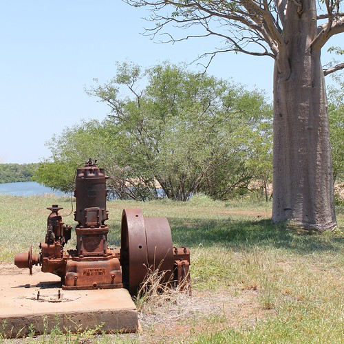 The Petters engine on the bank of the Ord River at the former Kimberley Research Station in November 2010