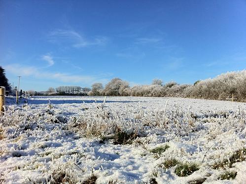 snow kerry
