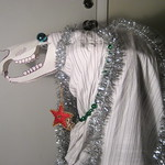 South Tampa Mari Lwyd: 2010-2011