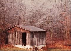 barn, building, hut, wood, shack, log cabin, sugar house, shed, rural area,