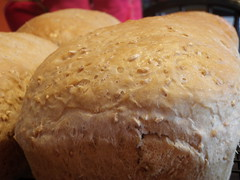 meal, breakfast, baking, beer bread, bread, baked goods, ciabatta, food, soda bread, cuisine, sourdough,