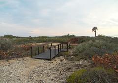 beach daytona Glory holes