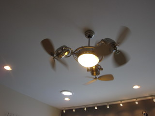 Herb Import Canal Back Nov 2010 Ceiling fan