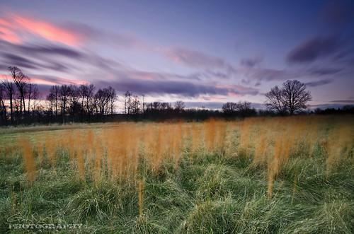 longexposure blue sunset clouds landscape nikon purple farm maryland explore filter nd 1224mm f4 d7000
