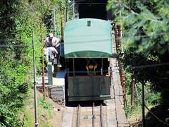 funicular, vehicle, transport, rail transport, public transport, rolling stock, track,