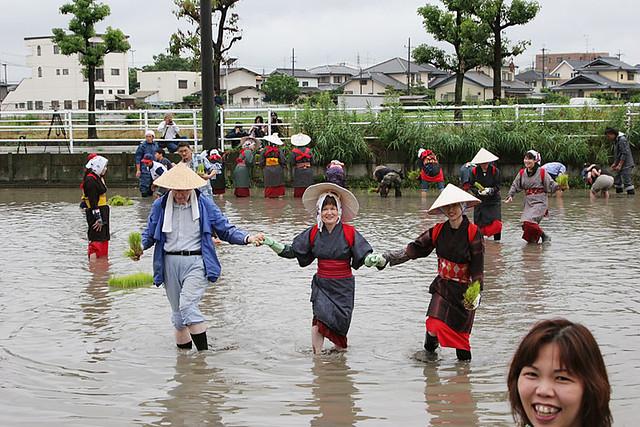 [url=https://www.flickr.com/photos/... 2009_お米作り