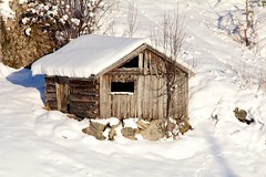 hut, winter, snow, shack, log cabin, sugar house,