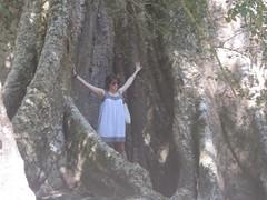 Big Tree. Small Chloe.