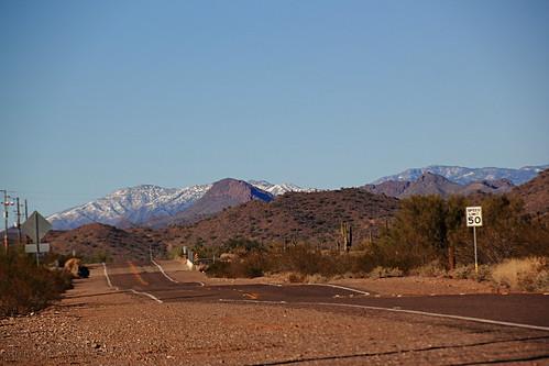 road arizona snow mountains canon wolf desert gimp surprise hybrid adoption t2i wherewolvesrescue