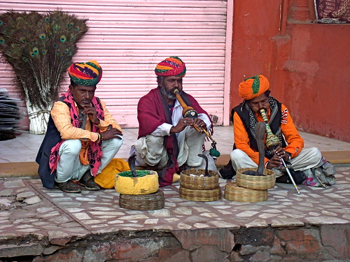 Charmed by the snake charmers
