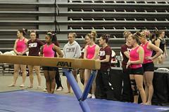 TWU Gymnastics Ready for Beam Warmup