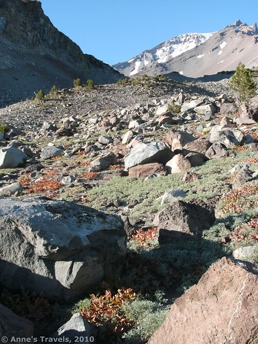 Hiking up the side of Mt. Shasta toward the Ski Bowl, California