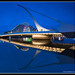Dublin's Beckett Bridge by Ronan Bree