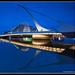 Dublin's Beckett Bridge by Ronan Bree