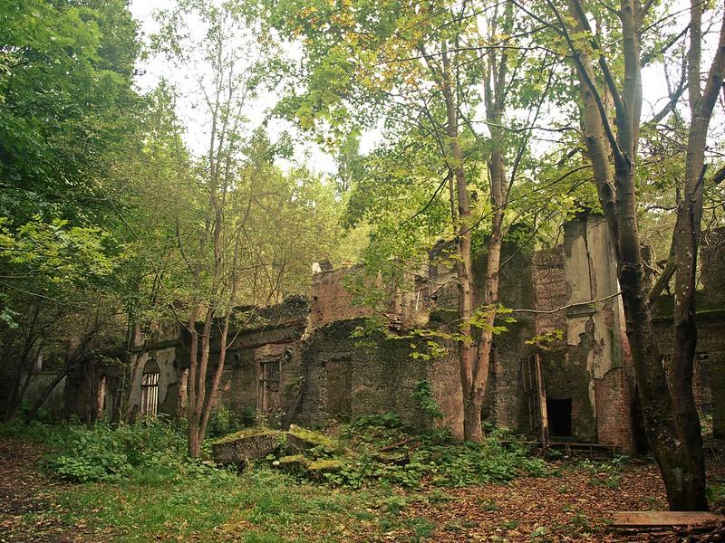 Brestovac Sanatorium (6)
