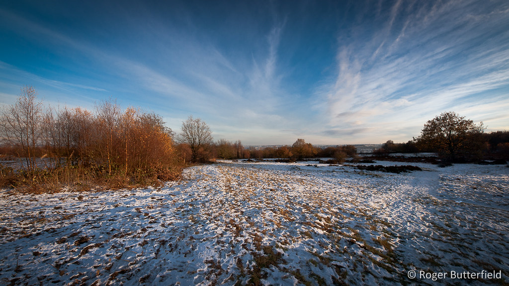 Loxley and Wadsley Common