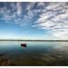 Barco na ria de Aveiro
