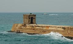 Tel Aviv Port
