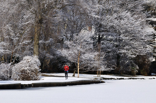 A Jog in the Snow - Argyle Pond, Babylon Village