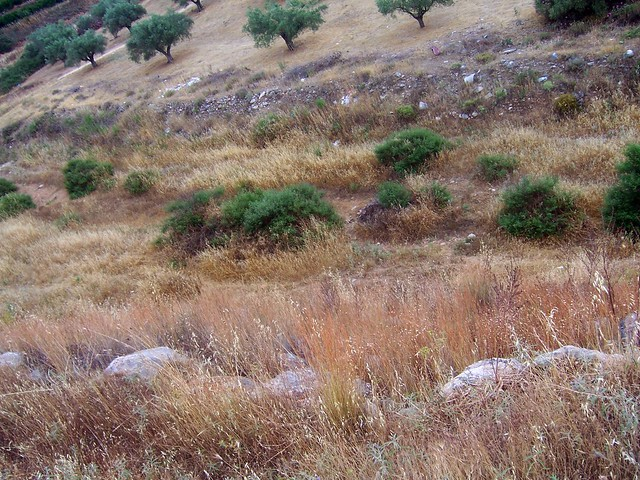 Mycenaean Dam of Tiryns