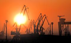 sunlight, sun, evening, morning, oil field, dusk, sunset, sunrise,