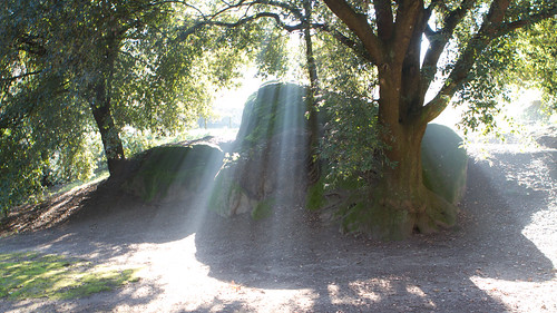 Ray of Light - IMG_0121