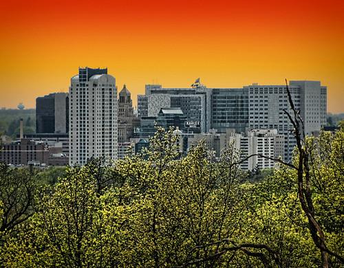 trees sunset minnesota skyline downtown rochester mayoclinic rochestermn oneyearago quarryhillpark oaksavannah fakesunset