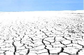 Artctic Desert