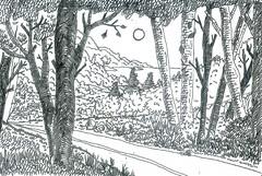 SketchC10