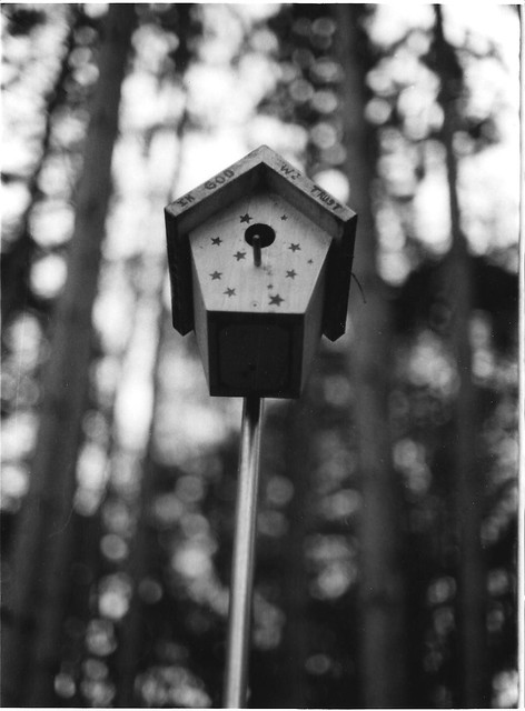birdhouse 001