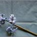 Jacinto sobre fondo de papel (hyacinthus)