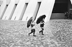 Little girls with Umbrellas