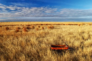 Wagon on the Prairie
