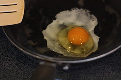 Black Face's first egg cracked