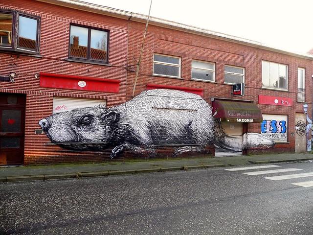 graffiti . streetart | roa | doel . belgium