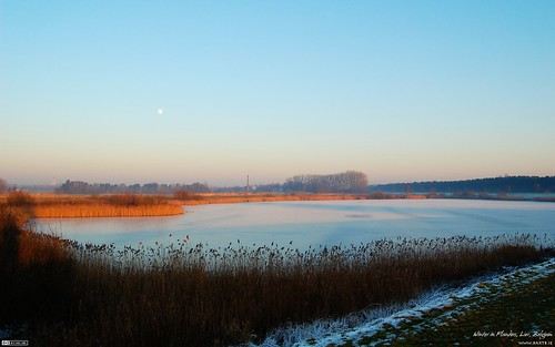 Winter in Flanders