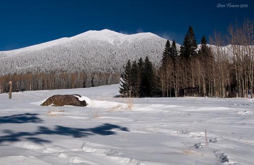 winter arizona flagstaff snowbowl nikond90