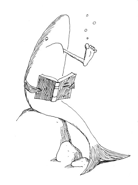 Franco Matticchio - Shark